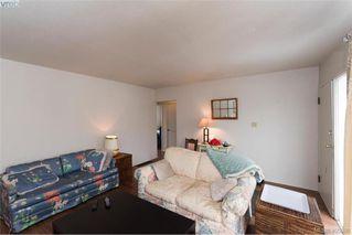 Photo 5: 3516 Calumet Ave in VICTORIA: SE Quadra House for sale (Saanich East)  : MLS®# 806601