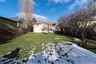 Photo 13: 3516 Calumet Ave in VICTORIA: SE Quadra House for sale (Saanich East)  : MLS®# 806601