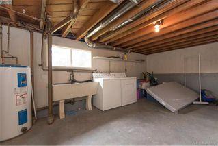 Photo 29: 3516 Calumet Ave in VICTORIA: SE Quadra House for sale (Saanich East)  : MLS®# 806601