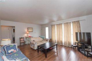 Photo 3: 3516 Calumet Ave in VICTORIA: SE Quadra House for sale (Saanich East)  : MLS®# 806601