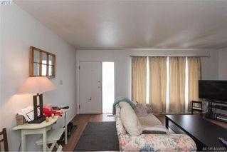 Photo 23: 3516 Calumet Ave in VICTORIA: SE Quadra House for sale (Saanich East)  : MLS®# 806601