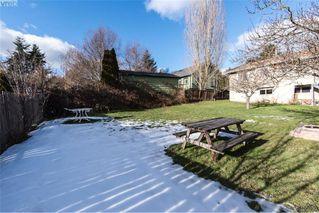 Photo 12: 3516 Calumet Ave in VICTORIA: SE Quadra House for sale (Saanich East)  : MLS®# 806601