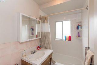 Photo 20: 3516 Calumet Ave in VICTORIA: SE Quadra House for sale (Saanich East)  : MLS®# 806601