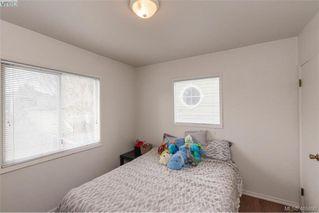 Photo 21: 3516 Calumet Ave in VICTORIA: SE Quadra House for sale (Saanich East)  : MLS®# 806601