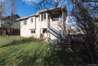 Photo 10: 3516 Calumet Ave in VICTORIA: SE Quadra House for sale (Saanich East)  : MLS®# 806601