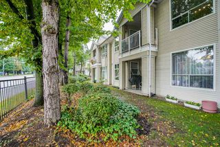 "Photo 20: 13 10038 150 Street in Surrey: Guildford Townhouse for sale in ""MAYFIELD GREEN"" (North Surrey)  : MLS®# R2342820"
