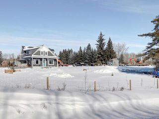 Photo 25: 0 2302 PARKLAND Drive: Rural Parkland County House for sale : MLS®# E4146624