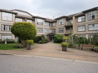 "Photo 14: 209 14885 105 Avenue in Surrey: Guildford Condo for sale in ""REVIVA"" (North Surrey)  : MLS®# R2350839"