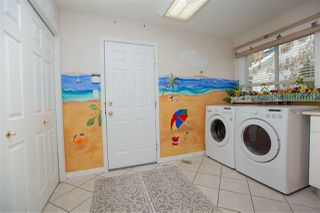 Photo 9: 3454 37 Street in Edmonton: Zone 29 House for sale : MLS®# E4149374