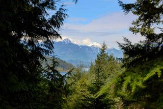 """Photo 9: 967 WINDJAMMER Road: Bowen Island House for sale in """"BLUEWATER"""" : MLS®# R2354068"""