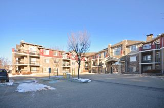 Photo 2: 224 2503 Hanna Crescent in Edmonton: Zone 14 Condo for sale : MLS®# E4150924