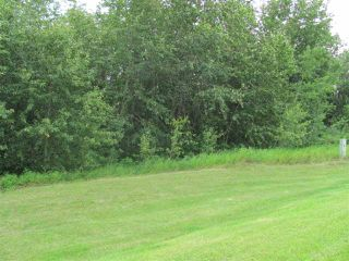Main Photo: 37, 56503 RR 231: Rural Sturgeon County Rural Land/Vacant Lot for sale : MLS®# E4160303
