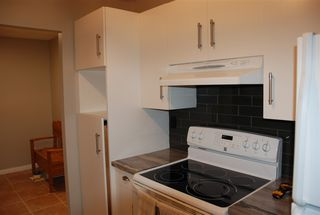 Photo 6: 103 5520 Riverbend Road in Edmonton: Zone 14 Condo for sale : MLS®# E4160462
