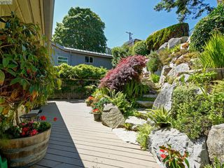 Photo 16: 5043 Cordova Bay Road in VICTORIA: SE Cordova Bay Single Family Detached for sale (Saanich East)  : MLS®# 412702