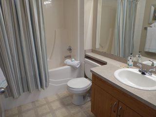 Photo 19: 203 9945 167 Street in Edmonton: Zone 22 Condo for sale : MLS®# E4176708