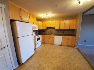 Photo 5: 315 261 YOUVILLE Drive E in Edmonton: Zone 29 Condo for sale : MLS®# E4182187