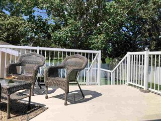 Photo 48: 156 Garwood Crescent: Wetaskiwin House for sale : MLS®# E4204978