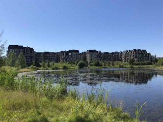 Photo 8: 227 6083 MAYNARD Way in Edmonton: Zone 14 Condo for sale : MLS®# E4207615