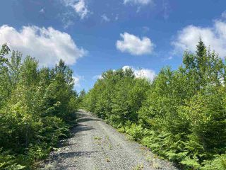 Photo 10: Lot 7 Highway 7 in Goldenville: 303-Guysborough County Vacant Land for sale (Highland Region)  : MLS®# 202015433
