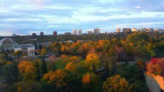 Photo 49: 1007 9720 106 street in Edmonton: Zone 12 Condo for sale : MLS®# E4210030