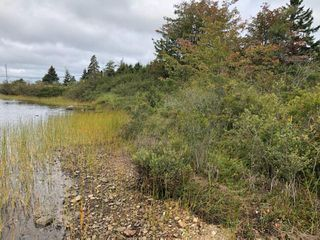 Photo 3: Lot H2 Bellefontaine Road in West Chezzetcook: 31-Lawrencetown, Lake Echo, Porters Lake Vacant Land for sale (Halifax-Dartmouth)  : MLS®# 202019368