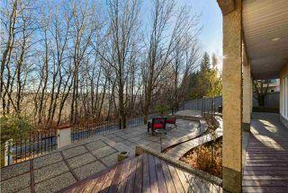 Photo 43: 421 OSBORNE Crescent in Edmonton: Zone 14 House for sale : MLS®# E4219837