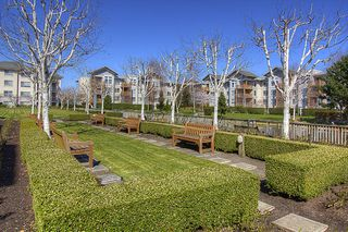 "Photo 18: 130 5500 ANDREWS Road in Richmond: Steveston South Condo for sale in ""SOUTHWATER"" : MLS®# V882835"