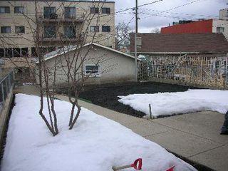 Photo 7: 9218 - 110A AVENUE: House for sale (McCauley)
