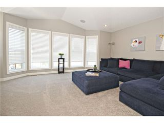 Photo 16: 87 BRIGHTONSTONE Passage SE in CALGARY: New Brighton Residential Detached Single Family for sale (Calgary)  : MLS®# C3620487