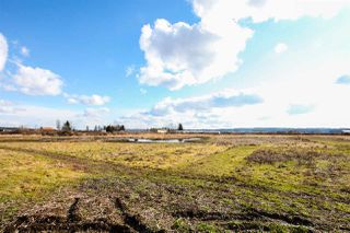 Photo 8: 14450 COLEBROOK Road in Surrey: Panorama Ridge House for sale : MLS®# R2142976