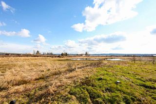 Photo 14: 14450 COLEBROOK Road in Surrey: Panorama Ridge House for sale : MLS®# R2142976