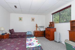 Photo 17: 11782 207 Street in Maple Ridge: Southwest Maple Ridge House for sale : MLS®# R2149667