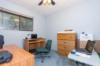 Photo 15: 11782 207 Street in Maple Ridge: Southwest Maple Ridge House for sale : MLS®# R2149667