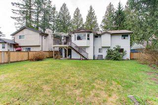 Photo 19: 11782 207 Street in Maple Ridge: Southwest Maple Ridge House for sale : MLS®# R2149667
