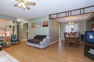 Photo 3: 11782 207 Street in Maple Ridge: Southwest Maple Ridge House for sale : MLS®# R2149667