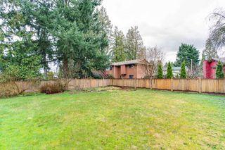 Photo 20: 11782 207 Street in Maple Ridge: Southwest Maple Ridge House for sale : MLS®# R2149667