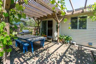 """Photo 17: 2629 MCADAM Road in Abbotsford: Abbotsford East House for sale in """"McMillan"""" : MLS®# R2188890"""