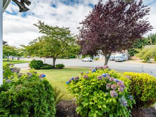 Photo 35: 2001 VALLEY VIEW DRIVE in COURTENAY: CV Courtenay East House for sale (Comox Valley)  : MLS®# 770574