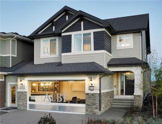 Main Photo: 12 CRANBROOK Lane SE in Calgary: Cranston House for sale : MLS®# C4161611