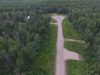 Main Photo: #12 13070 Twp Rd 464: Rural Wetaskiwin County Rural Land/Vacant Lot for sale : MLS®# E4099795