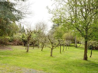 Photo 8: 4362 Wilkinson Road in VICTORIA: SW Interurban Single Family Detached for sale (Saanich West)  : MLS®# 390806