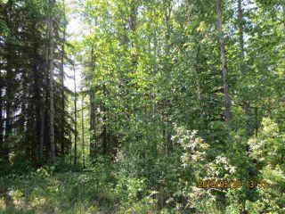 Main Photo: East Bank Road Range Road 135A: Rural Yellowhead Rural Land/Vacant Lot for sale : MLS®# E4029722