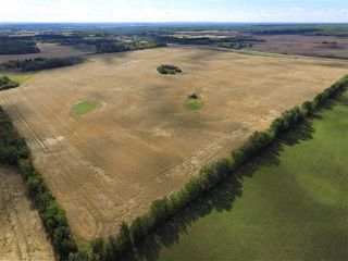 Photo 6: 2220 Twp Rd 534: Rural Lac Ste. Anne County Rural Land/Vacant Lot for sale : MLS®# E4131475