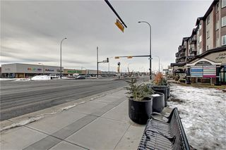 Photo 43: 1728 54 Street SE in Calgary: Penbrooke Meadows Detached for sale : MLS®# C4220376