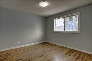 Photo 20: 1728 54 Street SE in Calgary: Penbrooke Meadows Detached for sale : MLS®# C4220376