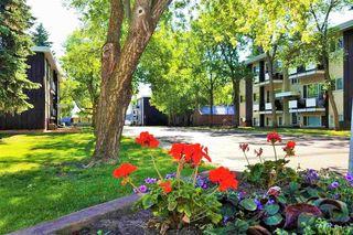 Photo 13: 4 5635 105 Street in Edmonton: Zone 15 Condo for sale : MLS®# E4155811