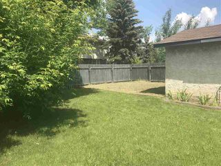 Photo 18: 9908 170 Avenue in Edmonton: Zone 27 House for sale : MLS®# E4163031