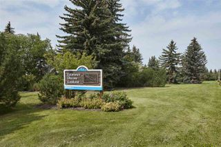 Photo 14: 8715 SASKATCHEWAN Drive in Edmonton: Zone 15 Vacant Lot for sale : MLS®# E4179380