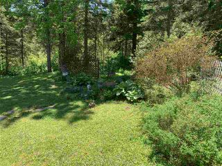 Photo 18: 932 Foxbrook Road in Foxbrook: 108-Rural Pictou County Residential for sale (Northern Region)  : MLS®# 202010614