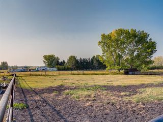 Photo 13: 276156 32 Street E: Rural Foothills County Agriculture for sale : MLS®# A1031383